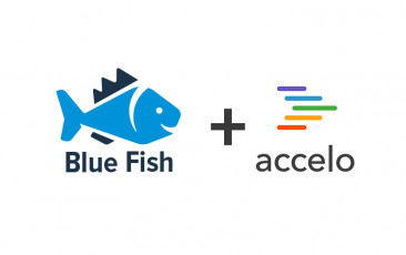 Blue Fish Accelo