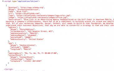 Example Schema Code