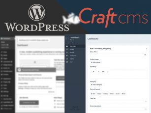 WORDPRESS VS. CRAFT WEBSITE: A BLUE FISH STUDY